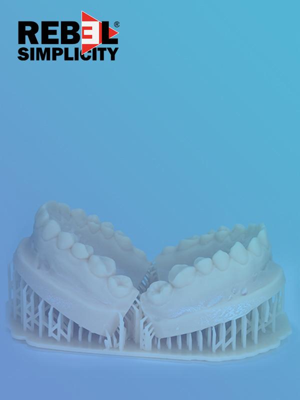 Rebel Simplicity Project